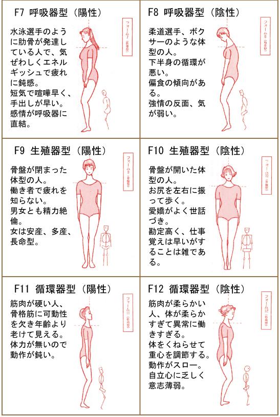 十二種体型表Ⅱ